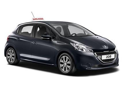 Peugeot driving school professional range